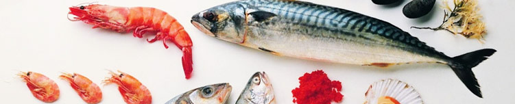 Fisk & Räkor